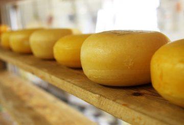 Bästa ost i världen